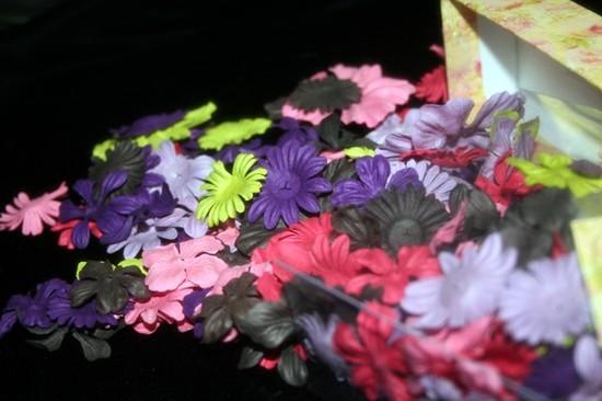 March_peek_flowers_002
